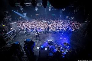 LOUNA-Arena