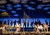 Дон будет доволен – «Звериные истории» в Санкт-Петербурге